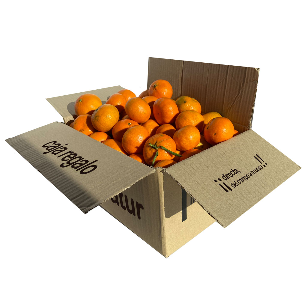 caja-regalo-mandarina