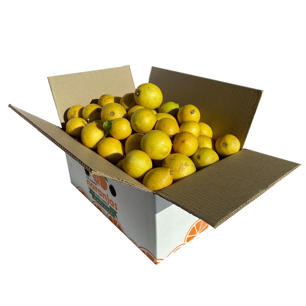 limon-frutanatur