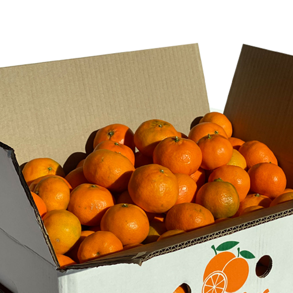mandarinas-frutanatur-2
