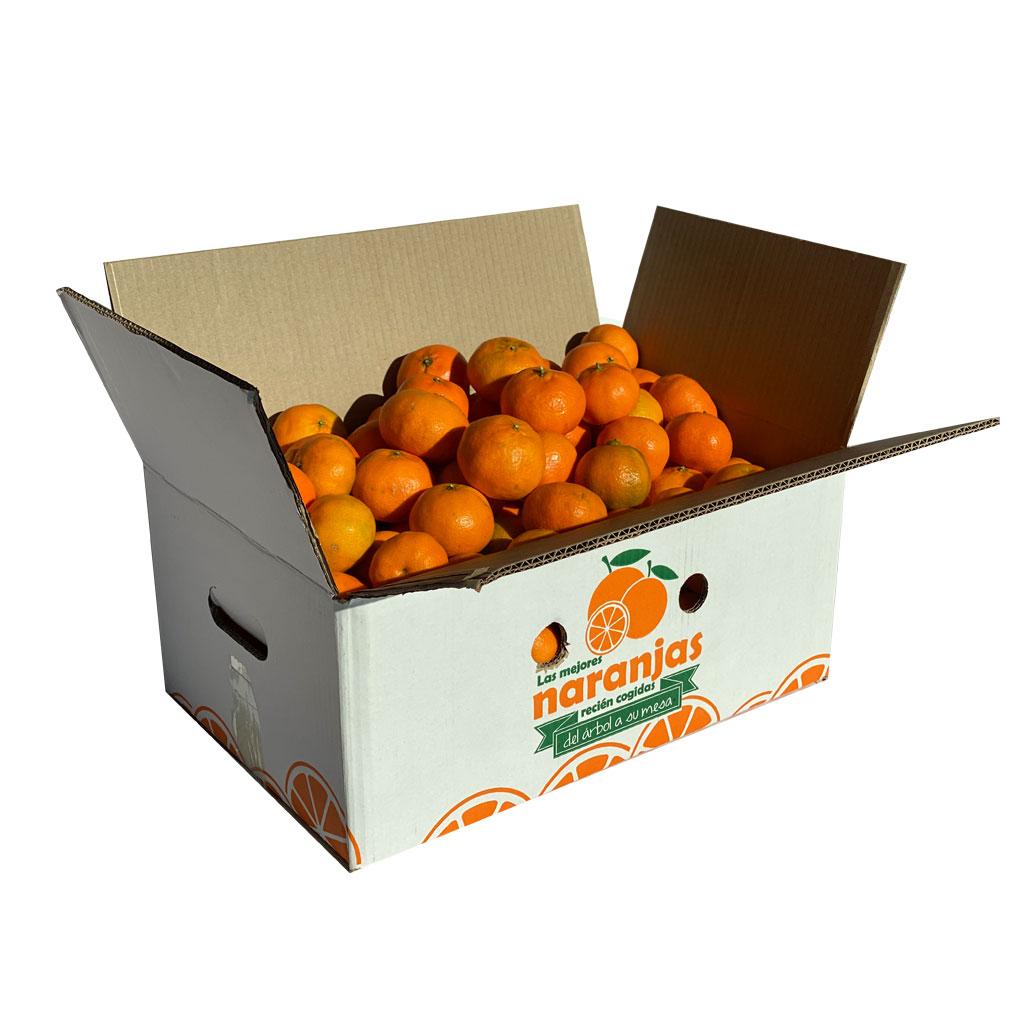 mandarinas-frutanatur