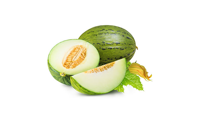 melon-frutanatur